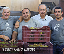 Team Gaia Estate